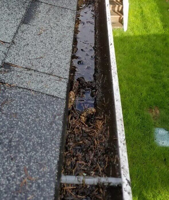 Gutter-Cleaning-Services-Danshaplandscape-before