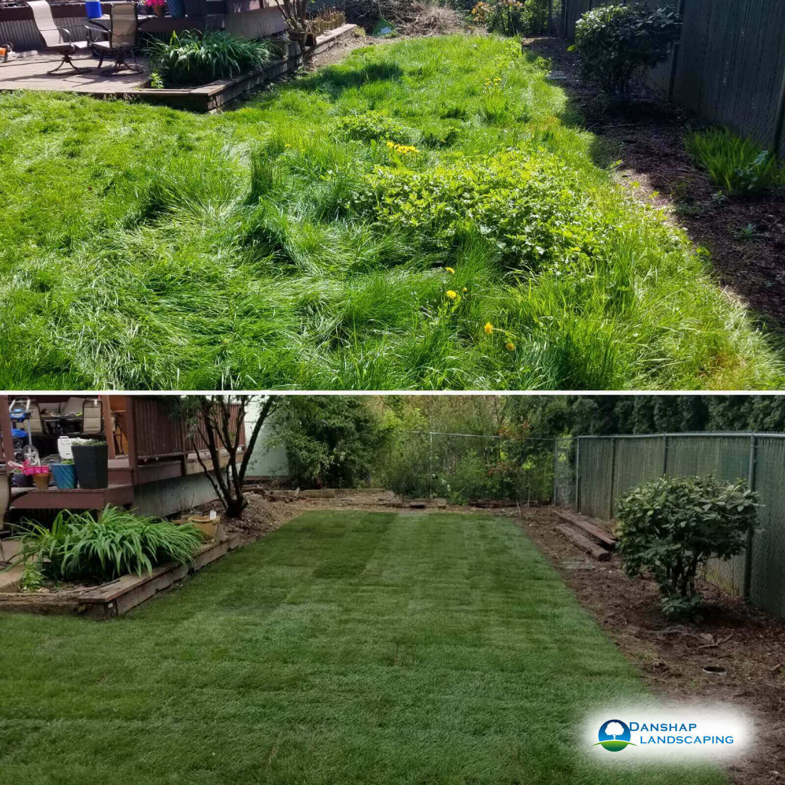 Sod-Replacement-Danshaplandscape-39