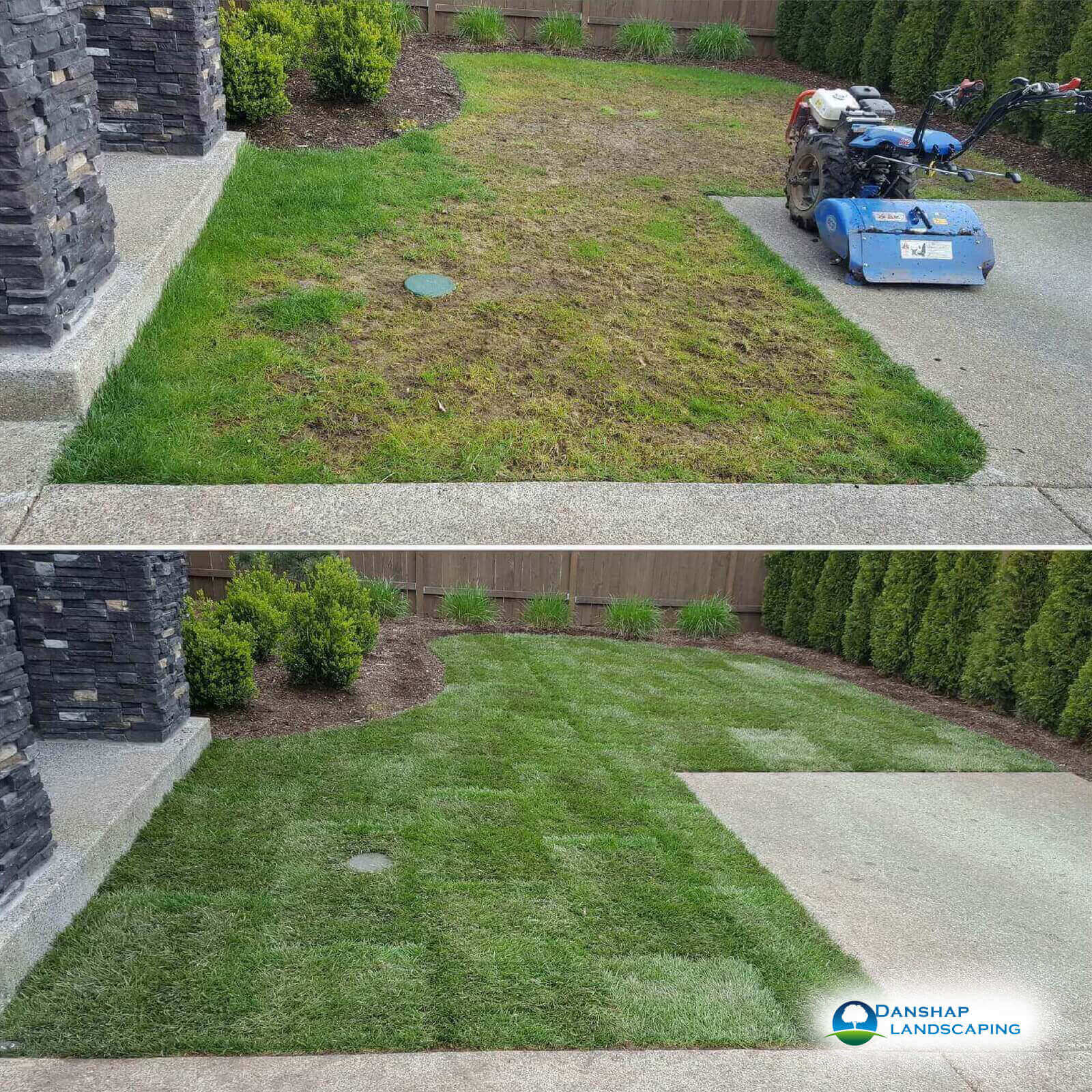 Sod-Replacement-Danshaplandscape-3