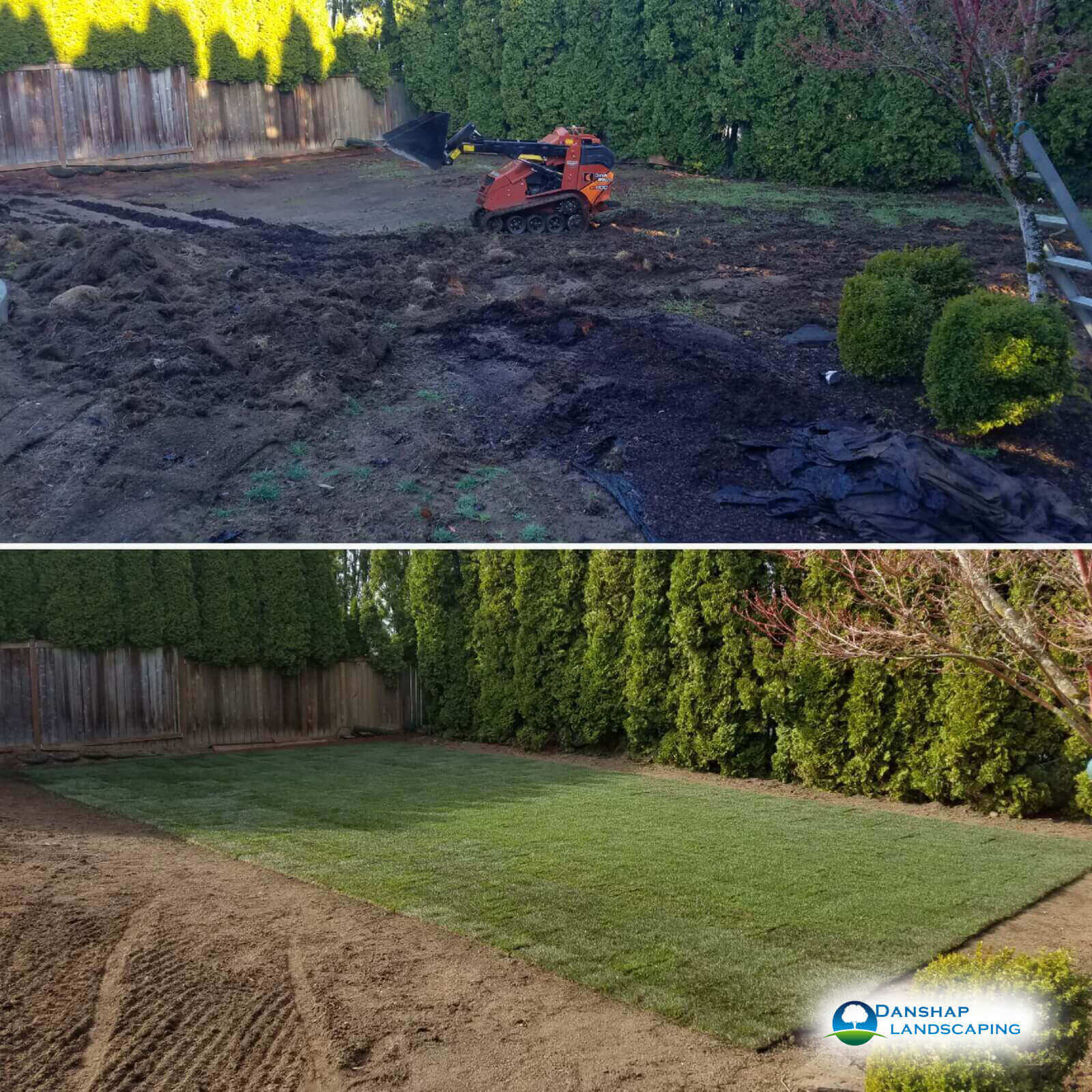 Sod-Replacement-Danshaplandscape-24