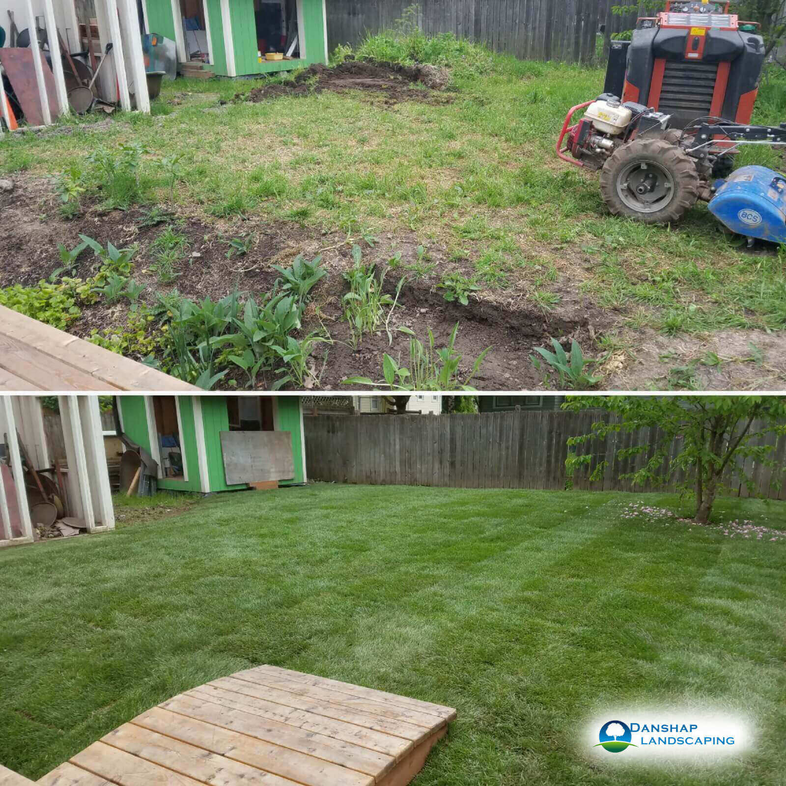 Sod-Replacement-Danshaplandscape-21