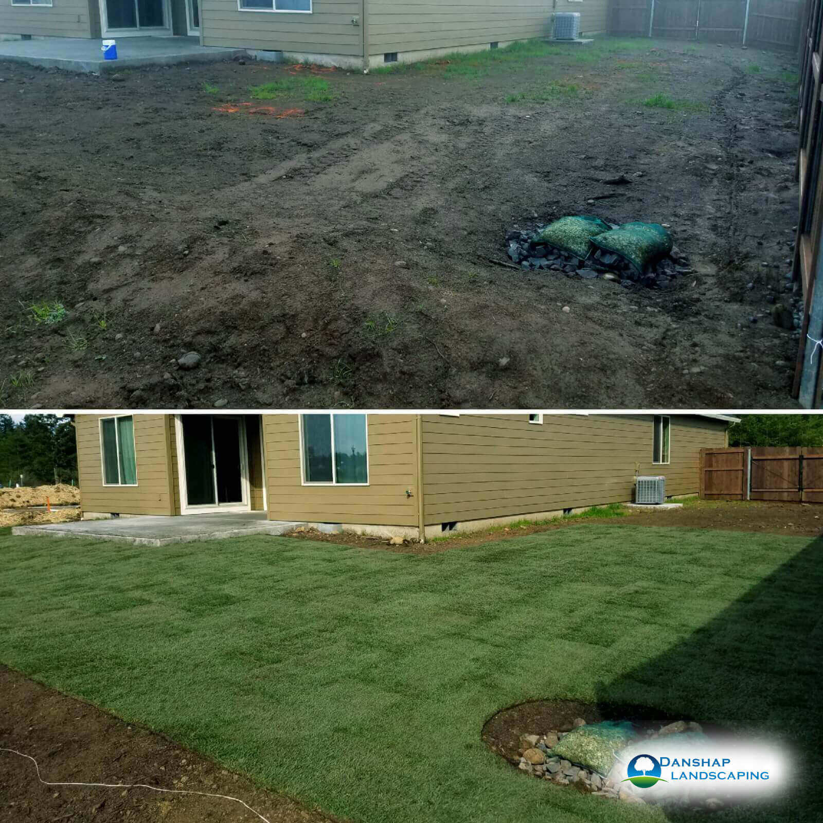 Sod-Replacement-Danshaplandscape-7